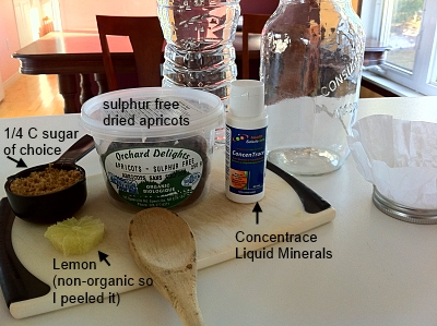 Water Kefir Ingredients